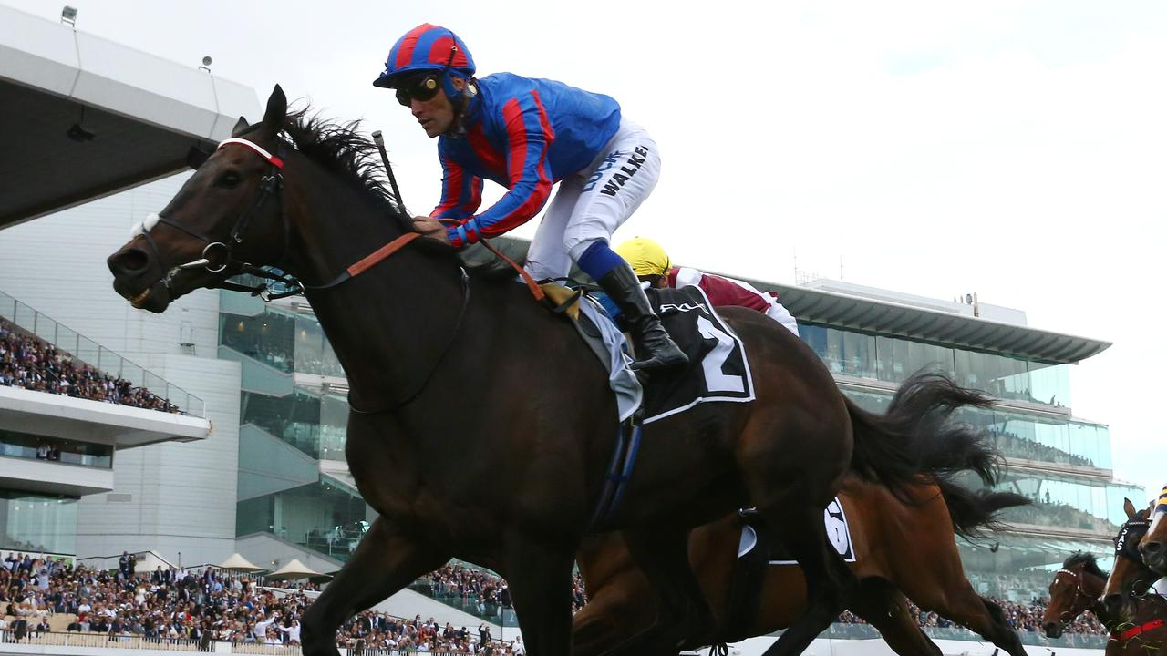 Prince Of Arran will return for another crack at the Melbourne Cup. Picture: Getty Images
