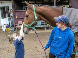 Trainer has one horse in richest race, working on a second