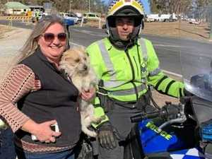 'Pawsome' way our police go above and beyond