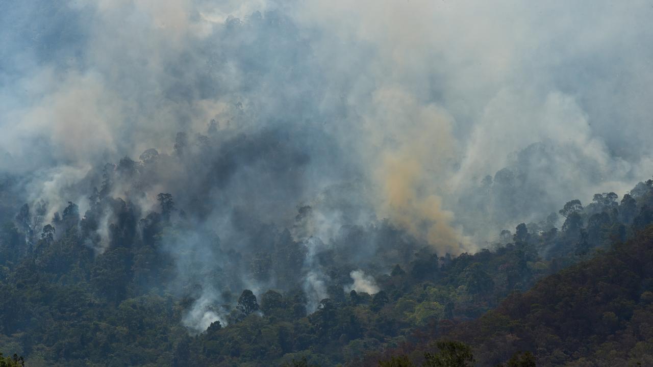The fire at Eungella last year. Photo: Emma Murray
