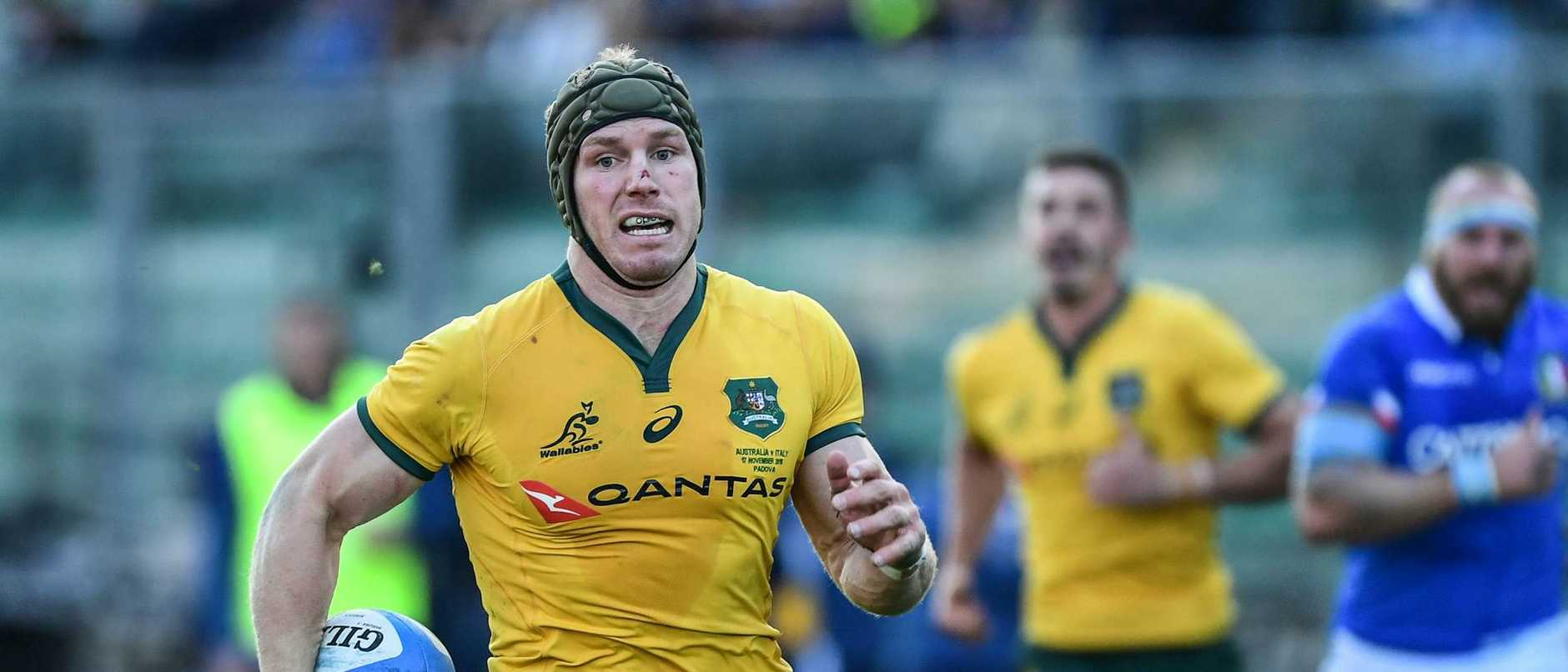 David Pocock shapes as a key player for the Wallabies.