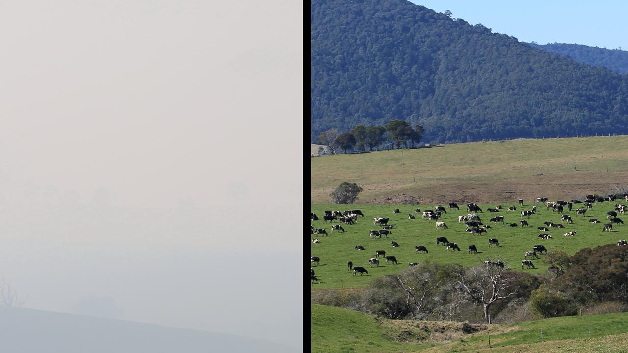 BEFORE AND AFTER: A Dorrigo reader sent these before and after shots of the smoke blanketing the rolling hills.