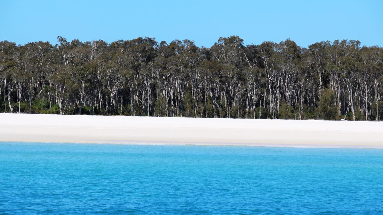 Pristine Fraser Island. Photo: Shirley Sinclair