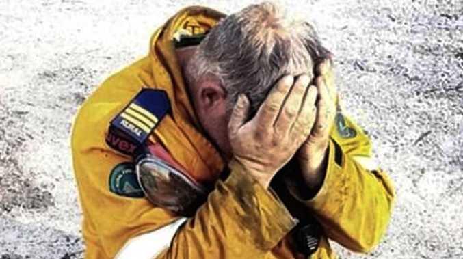 Cruel reality of devastating bushfires