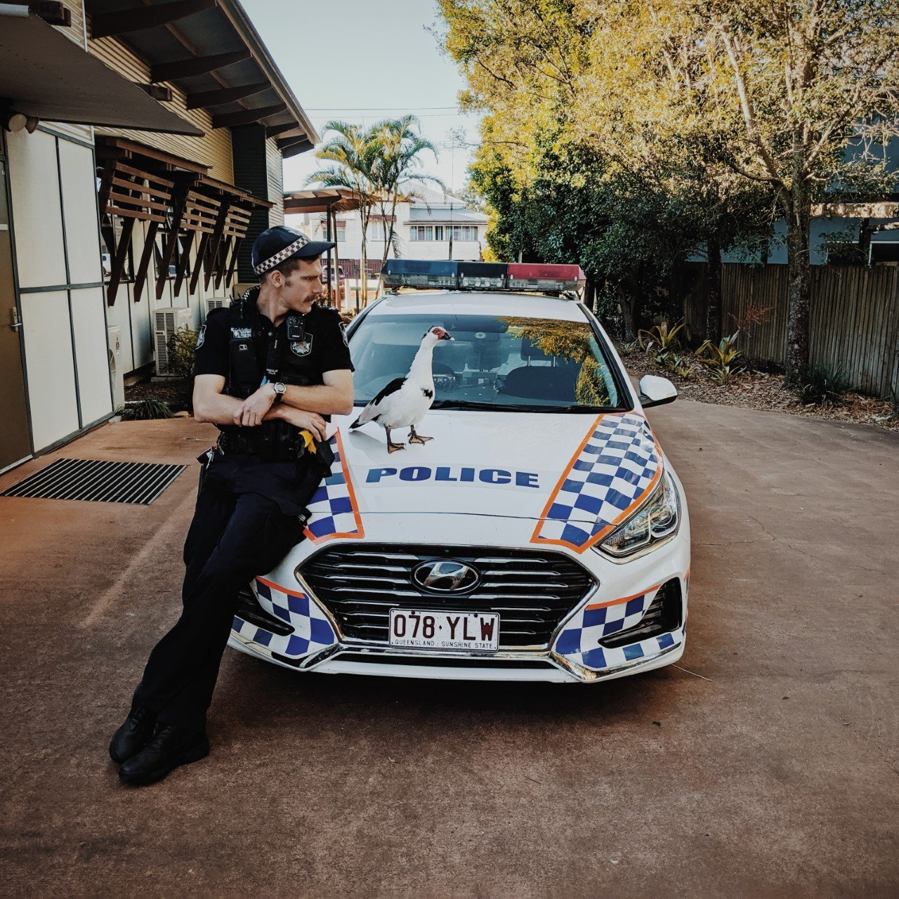 Constable Rohin Power with Bella the Childers Police Station Duck who has been taken under the wing of officers since she began living at the station in 2013.