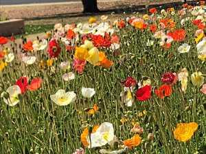 Big temperature ranges to welcome Burnett spring