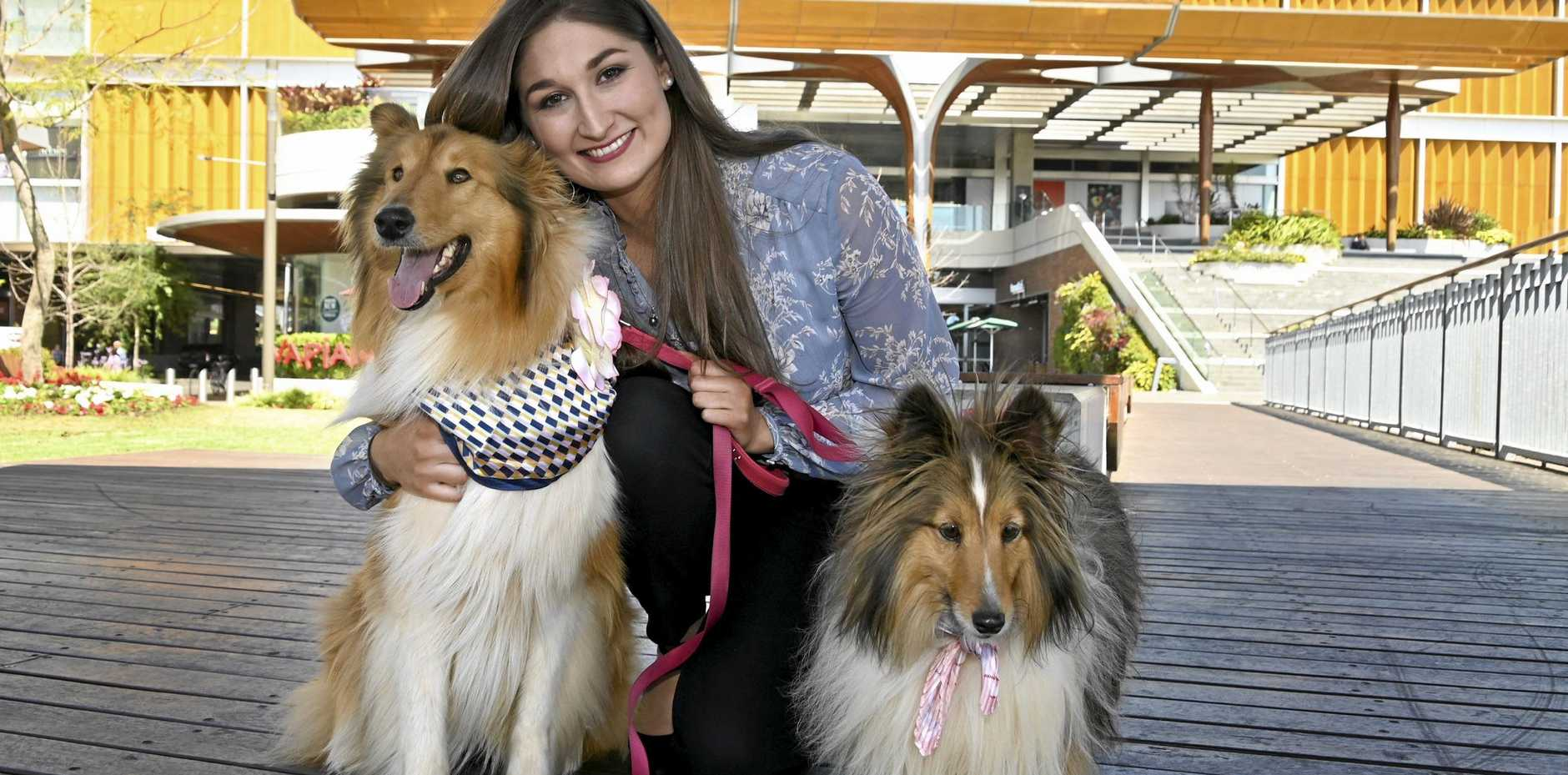 VANITY FUR: Chantelle Reyes and her dogs Penny (left) and Eevee have been selected for Toowoomba's first Grand Central dog fashion parade, which will take place on Saturday.