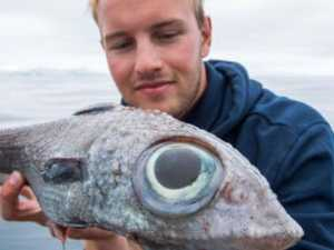 Teen's horrifying deep-sea catch