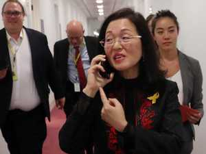 PM protecting Liberal MP Gladys Liu: Labor