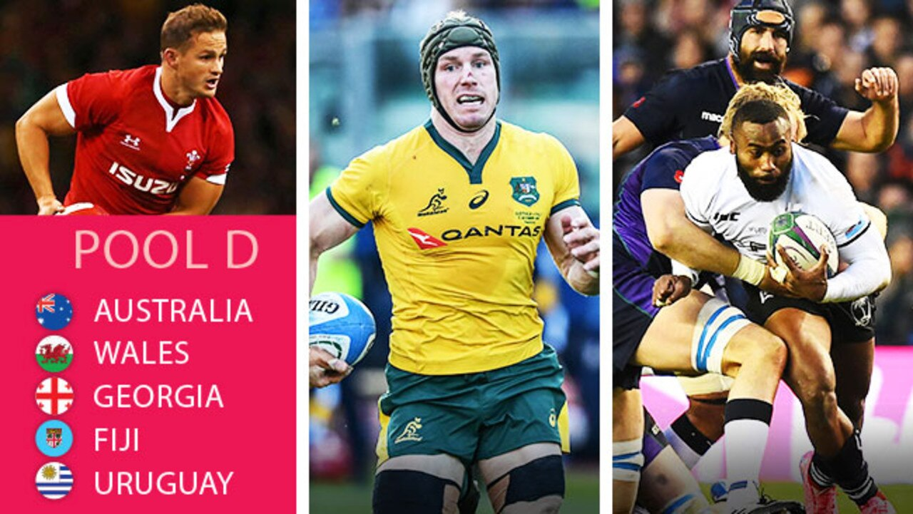 The contenders in Pool D at the Rugby World Cup.