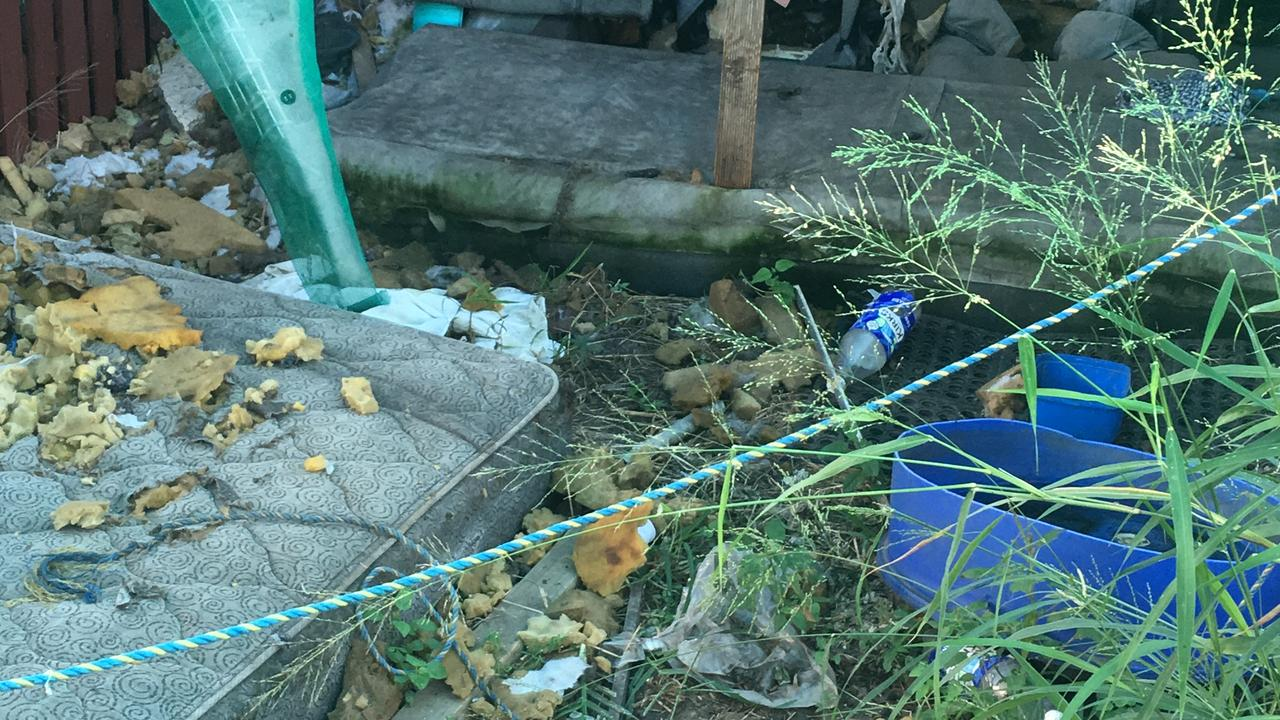 Some of the pictures taken by the RSPCA of the conditions animals were living in on Anthony Zink's property.