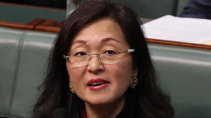 China blasts Gladys Liu 'witch hunt'