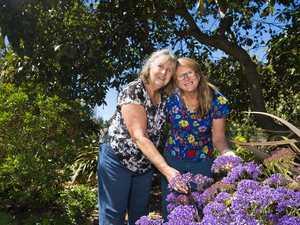 Triumph for our city grand champion gardener