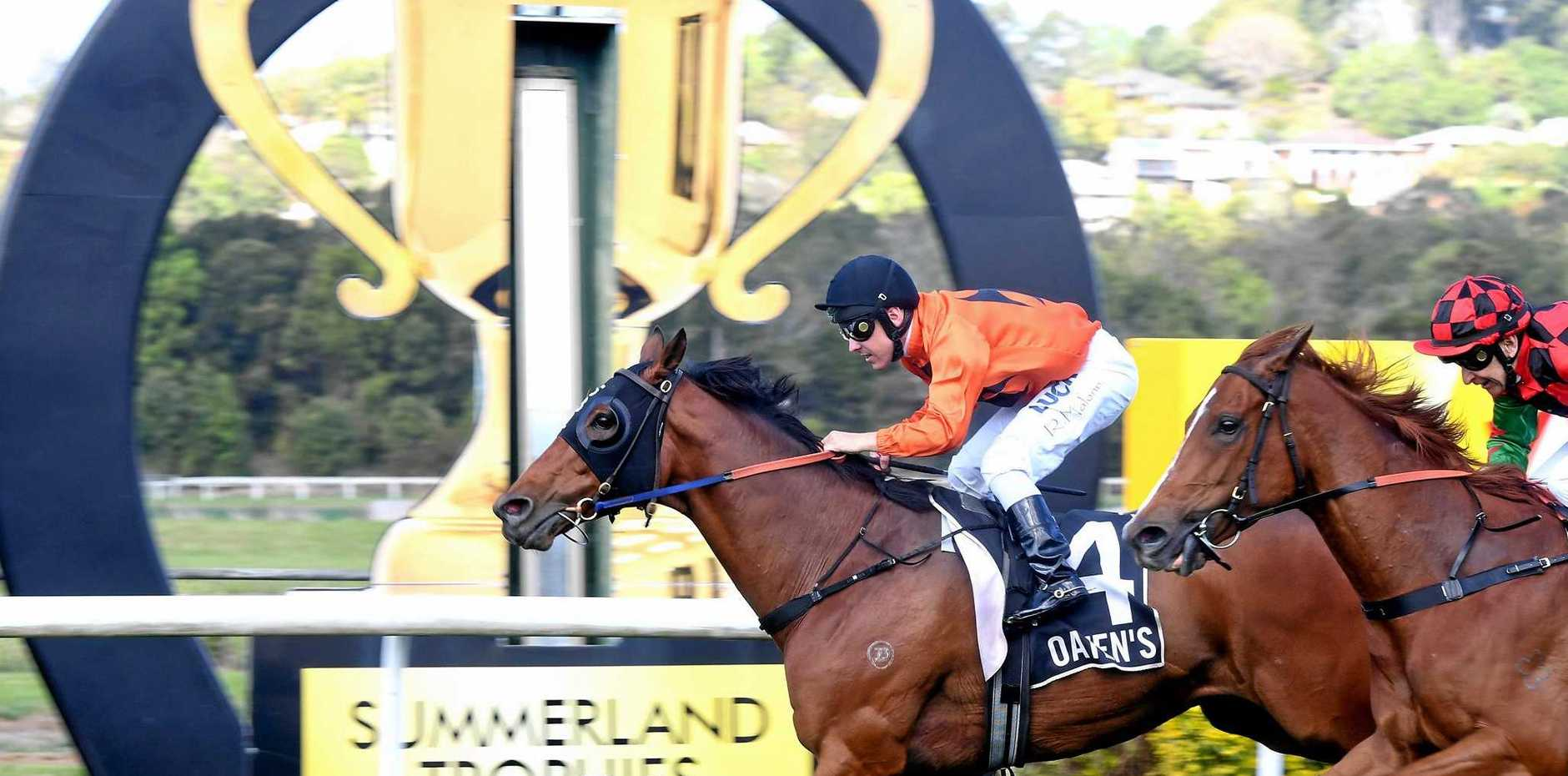 Local Lismore equestrian advocates back retiring racehorses.  Pictures is Ryan Maloney riding Spiral to victory in Race 3 at last year's Lismore Cup.