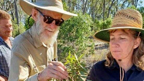 Landcare stalwart won't return to role
