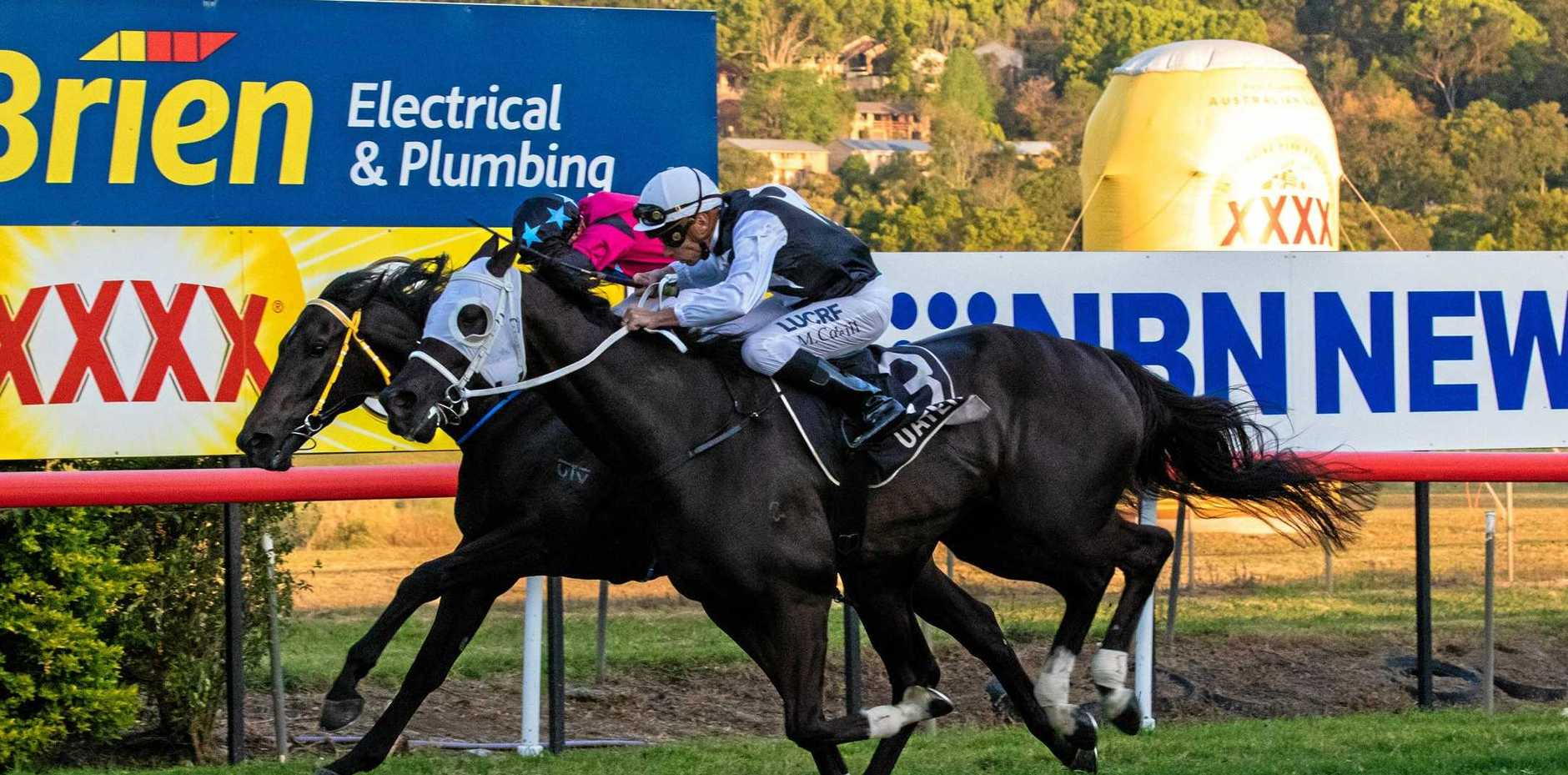 Jockey Michael Cahill rides Kuttamurra Al (No 3) to win the $75,000 Lismore Cup (2100m) today. The seven-year-old gelding, which won by a nose from Ambitious Prince, is trained by Lindsay Hatch.