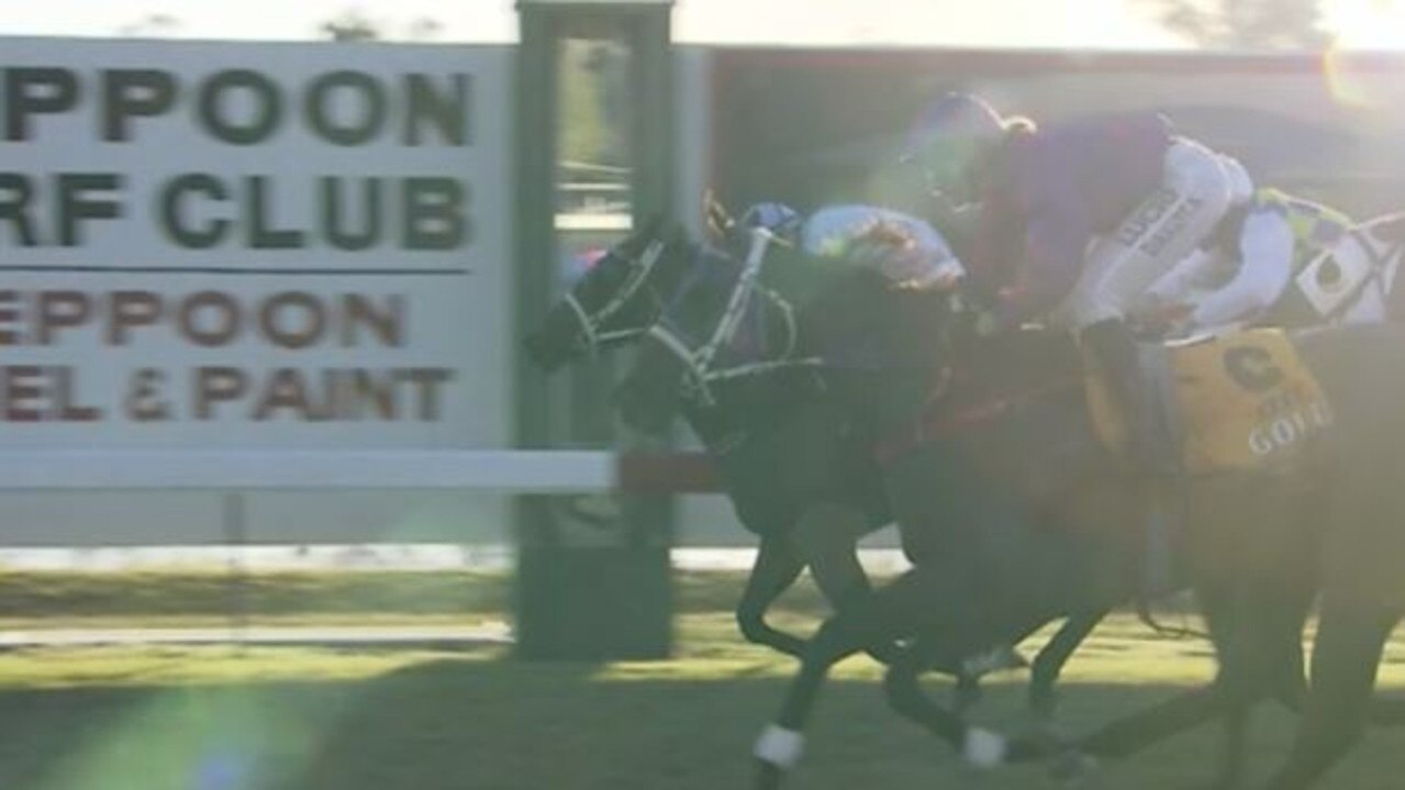 The Great Fox (outside horse) and Victory Toast (inside) finish at Yeppoon on July 23.