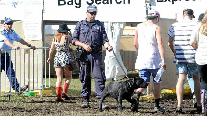 Strip search of 16-year-old girl at Splendour under scrutiny