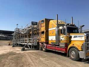 Trial of livestock unloading frame underway in Queensland