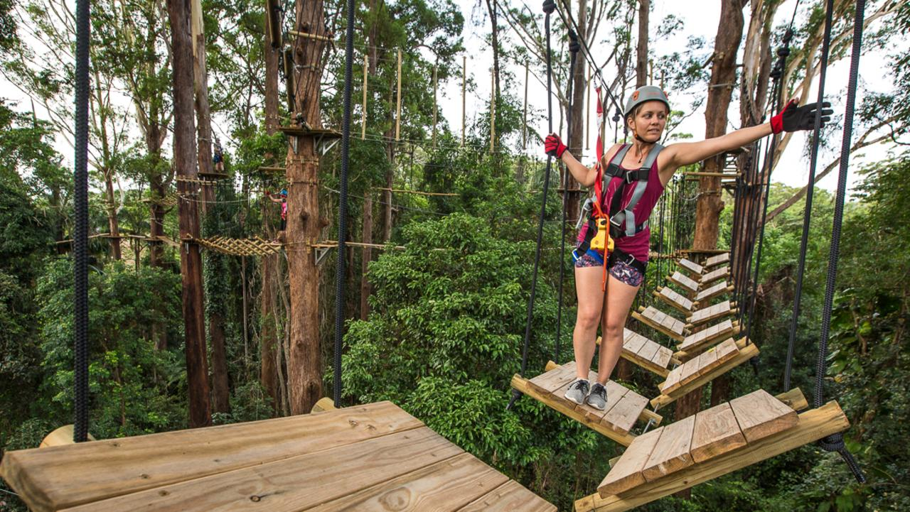 Tree Top Challenge are a finalist at Telstra's Queensland Business Awards 2019. Picture: supplied