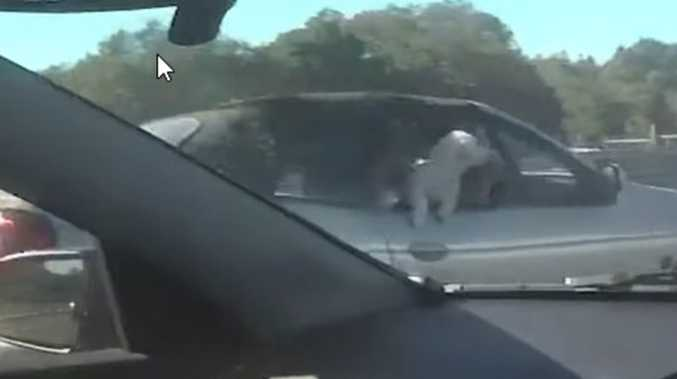 Shocking video of 'absolutely ridiculous' M1 offence