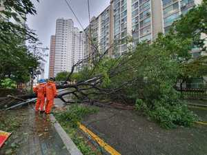 Typhoon batters South Korea