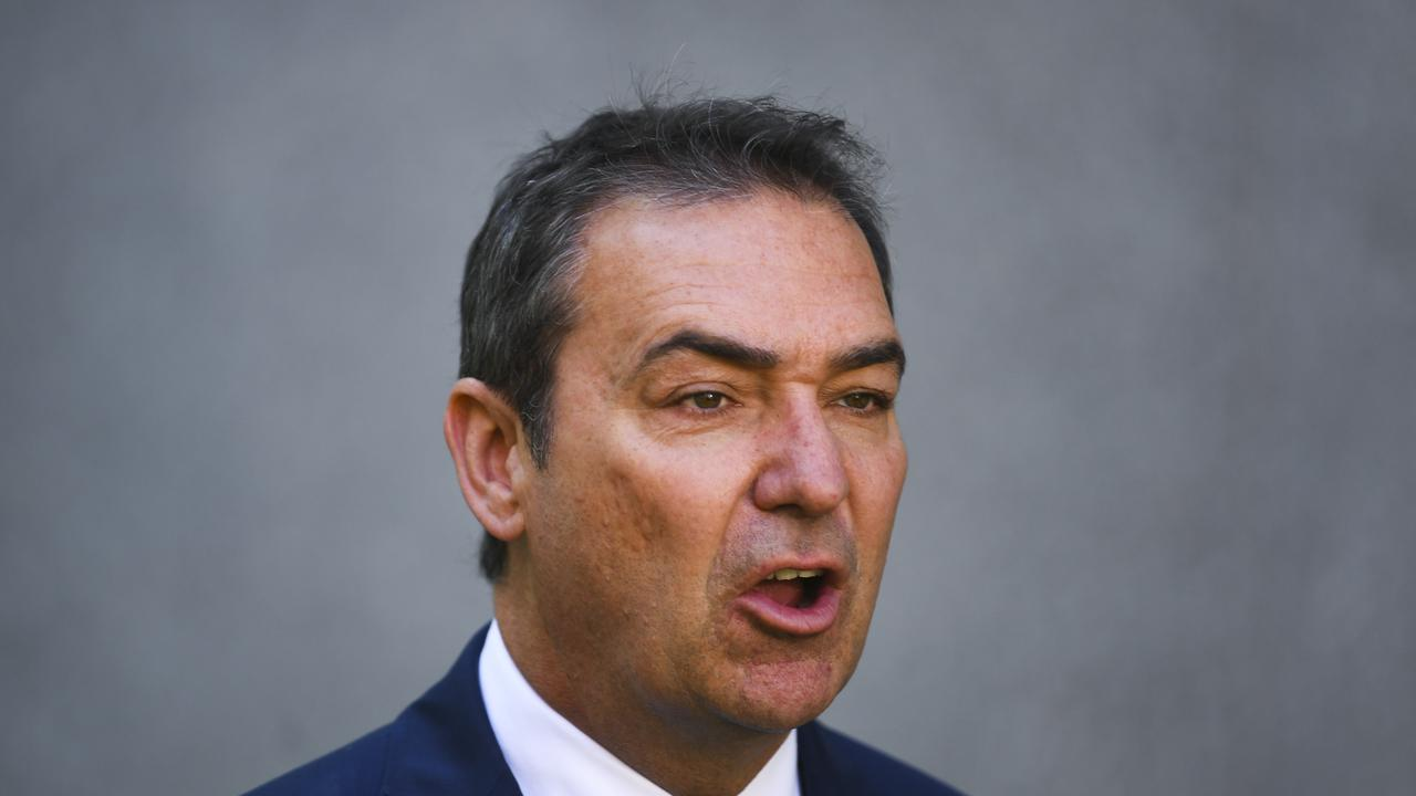 SA Premier Steven Marshall said Zelic should visit once again. Picture: Lukas Coch/AAP