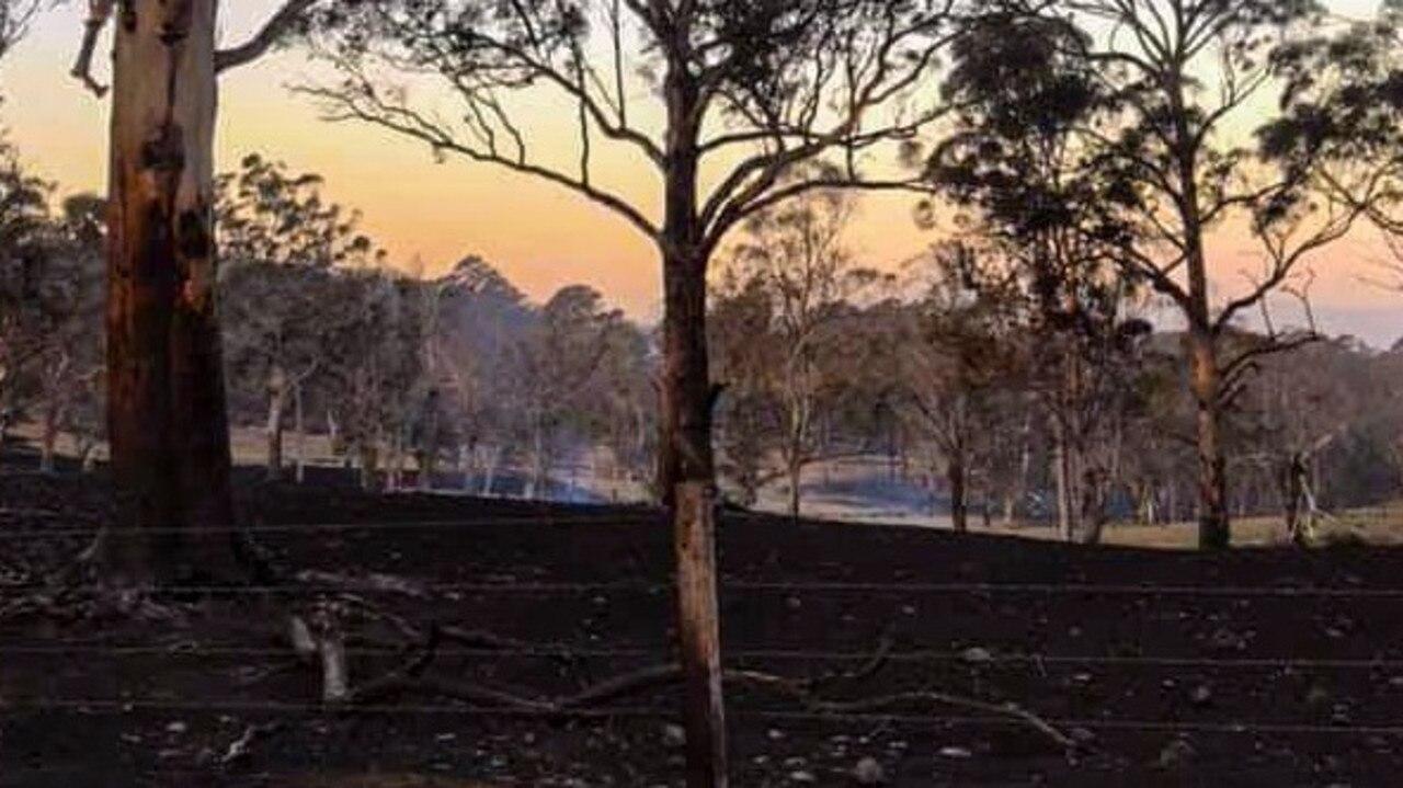 The Bees Nest fire west of Dorrigo has left a trail of destruction.