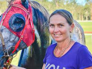 Wrong horse debacle inquiries not released