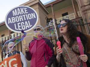 Painkillers for foetuses: abortion bill amendments