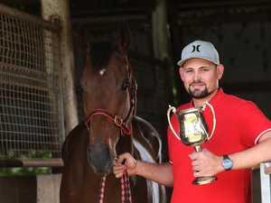 Wehlow horse returns positives