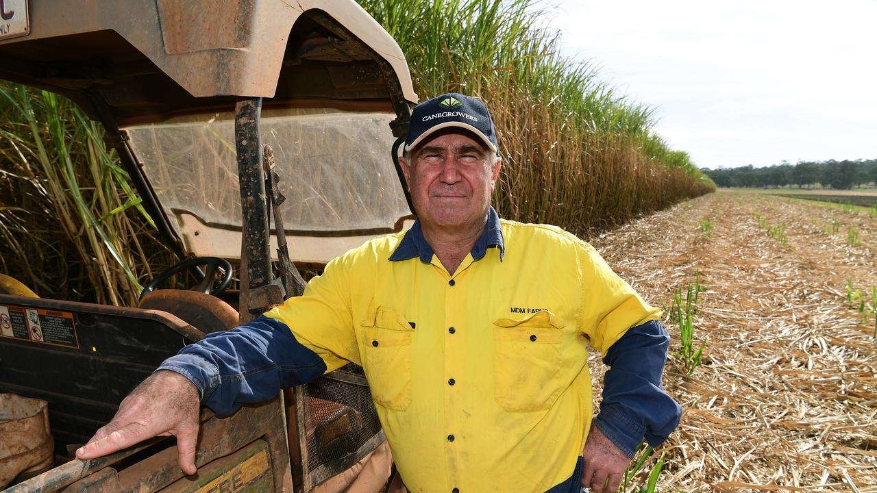 Childers sugarcane grower Mark Mammino.