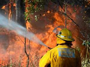 Bush fire in state forest expected to burn for days