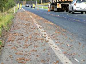 Drivers get an 'offal' surprise on D'Aguilar Highway