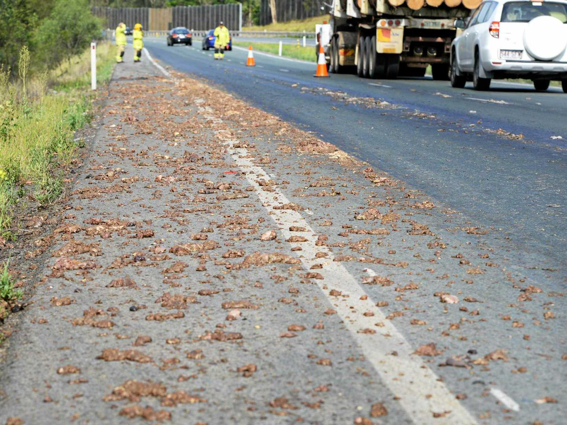 Offal spilled all over the D'Aguilar Highway outside of Kilcoy just like it did here on the Warrego Highway in 2013.