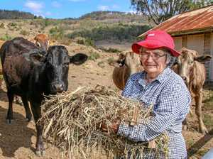 TOO HARD: Farm buys hay for first time in 40 years