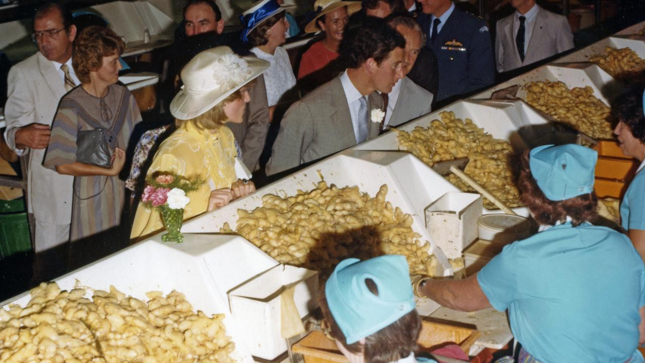 Prince Charles and Princess Diana on a guided tour of the Buderim Ginger Growers Factory, Yandina, April 12, 1983. The Royal couple toured the Ginger Factory after travelling to Yandina via Coolum from Maroochy Airport, where they had arrived from Brisbane as part of their month long tour of Australia. After the factory tour and a morning tea, the Royal couple travelled through Nambour to the Sun