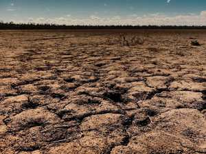 Albanese: Govt all talk on drought