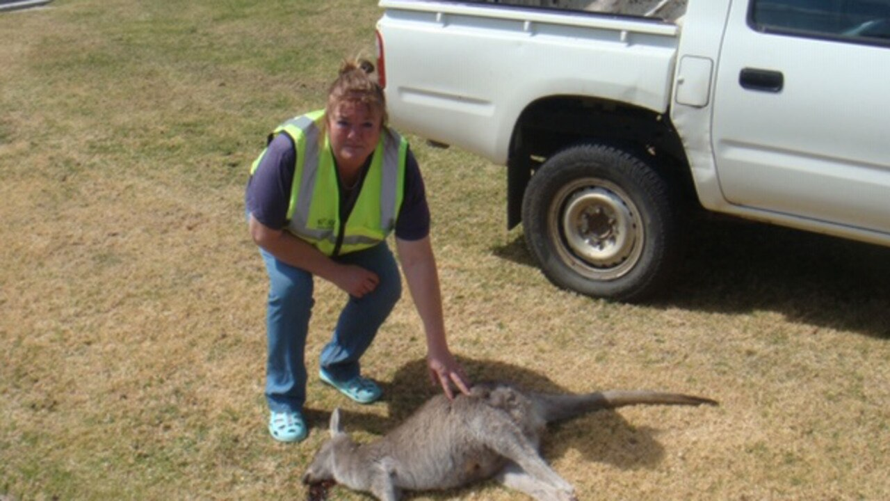 Janine Green with one of the dead kangaroos. Picture: Supplied