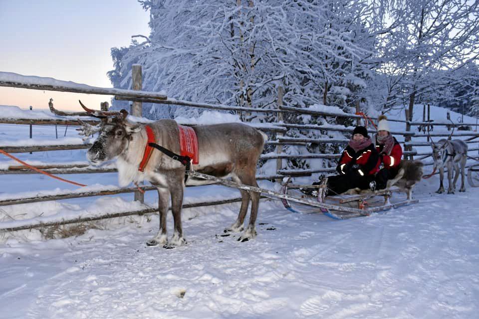 WINTER WONDERLAND: Holly Weyman-Jones in Finland helping Santa.