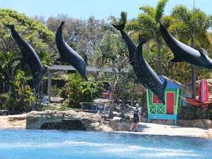 Animal activists score major win over Sea World