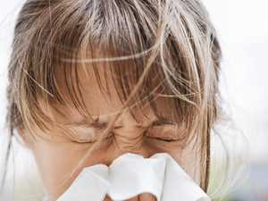 7 dead from flu-related complications in Wide Bay this year