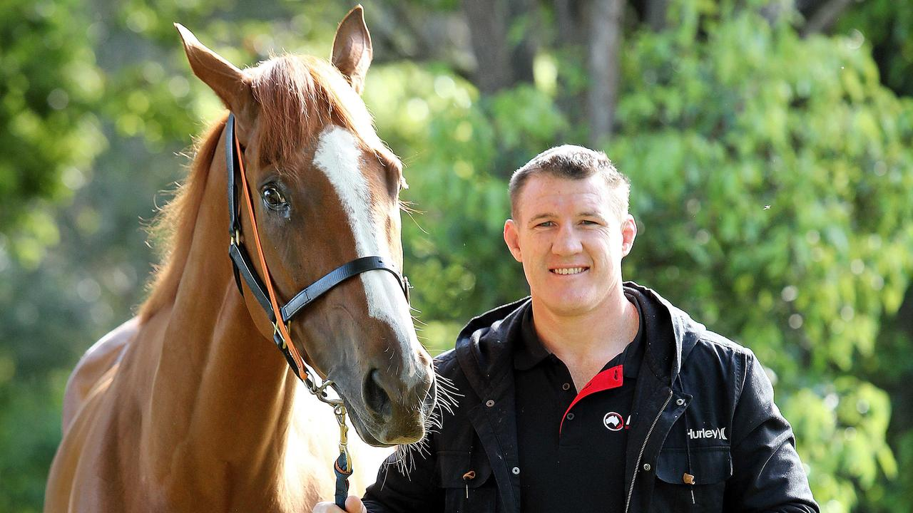 NRL legend Paul Gallen is a part-owner of top Epsom hope Te Akau Shark. Picture: Tim Hunter