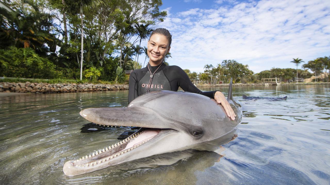 Marine mammal trainer Brooke Pelizzari bonding with dolphin Scooter at Sea World. Picture: Nigel Hallett