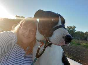 Adopted dog saves Warwick woman - Twice!