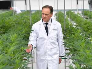 11,000 Aussies approved: Medicinal cannabis