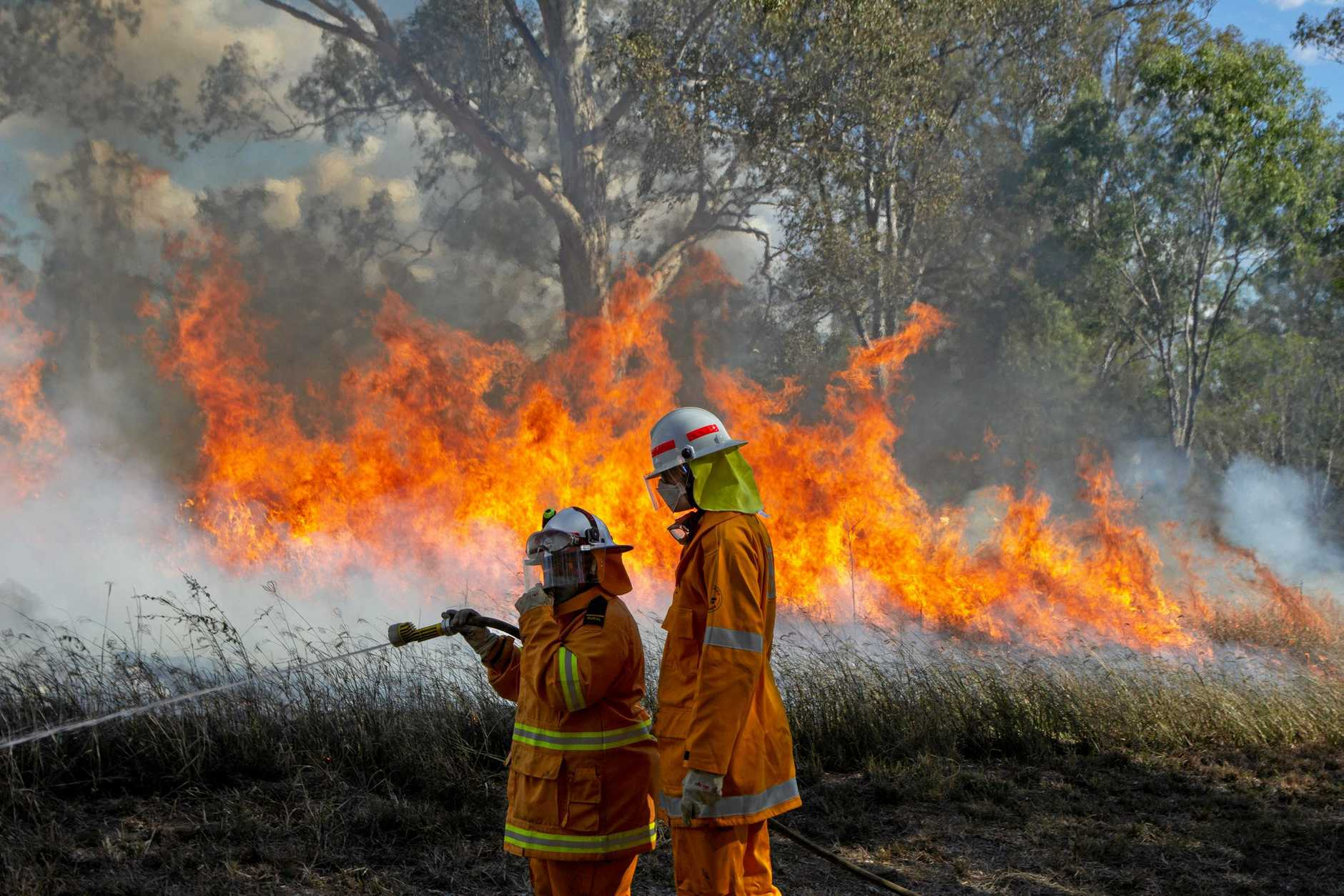2019 has been one of the most fire ravaged starts to a spring summer period in NSW's history,
