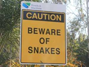 Elderly man bitten by snake on coast