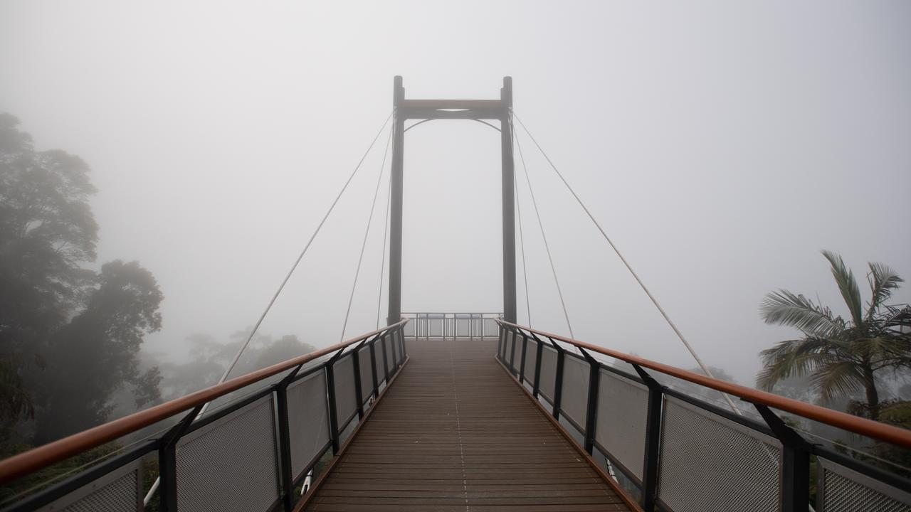 Fog at Sealy Lookout at 8.30am on Tuesday morning. Photo by Trevor Veale