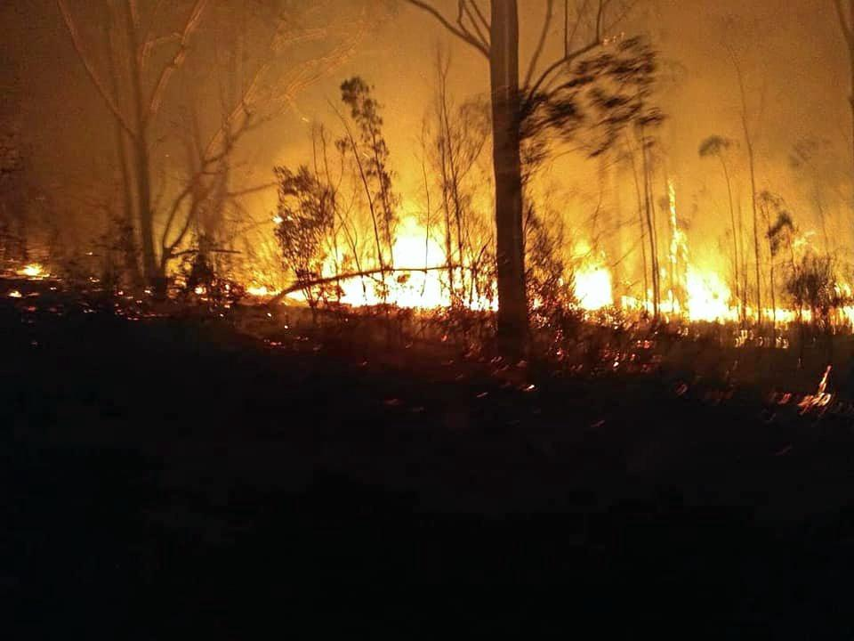Members of Casino Rural Fire Brigade were at the Rappville/Busby's Flat fire defending properties.